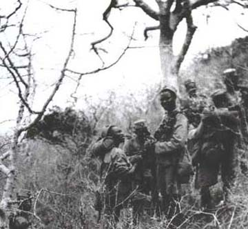 4th King's African Rifles fighting in the bush